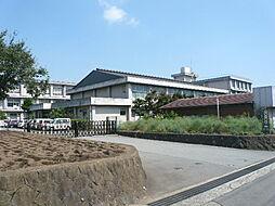 向田小学校(5...