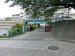 小学校横浜市立...