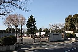 水戸市立吉沢小...