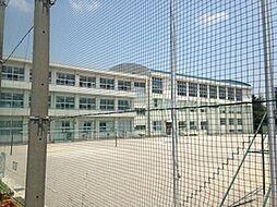 赤坂中学校