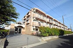 神奈川県小田原市栢山の賃貸マンションの外観