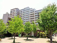 平成23年築梅島駅5分の好立地ペットと一緒に暮らせます