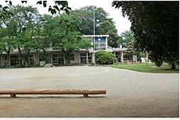 大巌寺幼稚園 ...