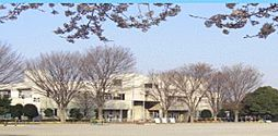 黒浜北小学校 ...