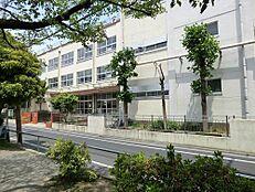 綾瀬小学校 430m