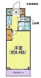 プロシード新横浜[503号室]の間取り