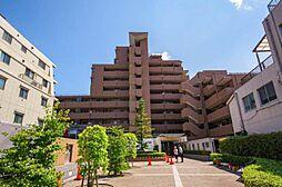 駅歩9分・リフォーム完了 ライオンズマンション西武柳沢