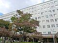 【総合病院】日...