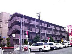 ベルデ堺東[113号室]の外観