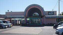 ドミー 飯村店(1266m)