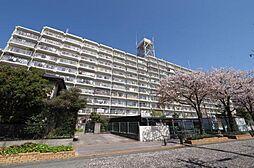 志木ハイデンス 9階