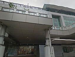 神奈川県小田原市府川の賃貸アパートの外観