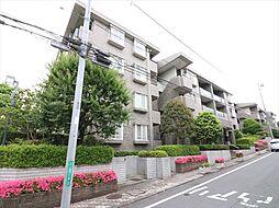 コープ野村緑山ヒルズ弐番館 216