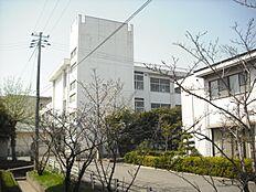 津田小学校