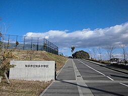 知多市立知多中学校 徒歩 約8分(約600m)