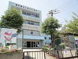 三郷市立栄中学...