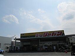 ジャパン狭山