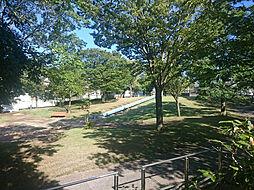 公園 皐月公園...