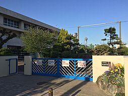 桜台中学校 約...