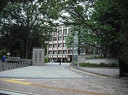 大学筑波大学(...