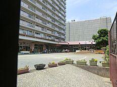 つばめ幼稚園(約750m10分)