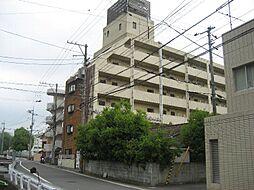 松山市道後樋又1187-2