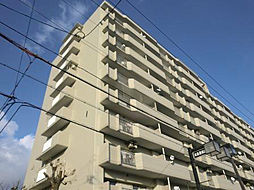 大和川コーポ[8階]の外観
