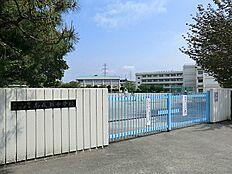 町田市立南成瀬中学校まで550m