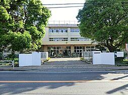 酒井根小学校