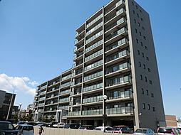 パシフィック福住[7階]の外観