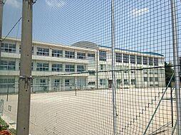 赤坂中学校まで...