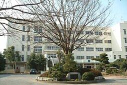 薬円台南小学校...