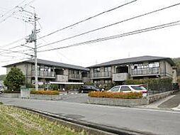 大阪府和泉市三林町の賃貸アパートの外観
