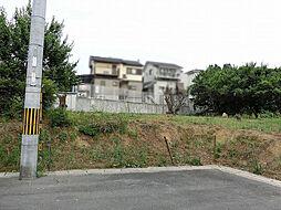京都市伏見区桃山町正宗