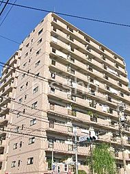 6980−サンレイ浅草[1101号室]の外観