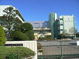 中学校松伏中学...