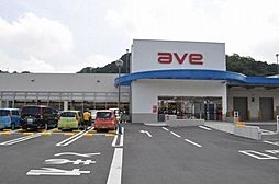 ave衣笠店