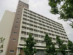 メゾン茨木[4階]の外観
