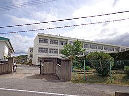 白橿北小学校