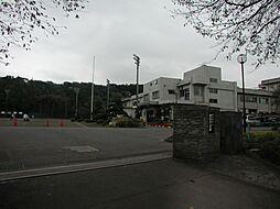 相陽中学校まで...