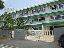 茨木市立南中学...