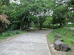 周辺環境:公園...