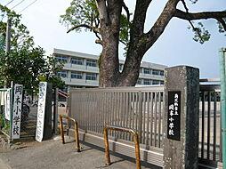 岡本小学校(6...