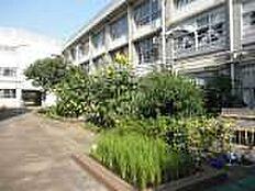練馬区立大泉東小学校