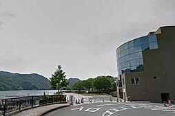 県立相模湖公園...