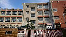 豊が丘小学校