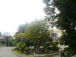 桜町小学校.(...