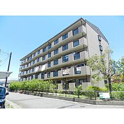 滋賀県近江八幡市鷹飼町東2丁目の賃貸マンションの外観