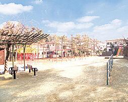 梨風公園 13...