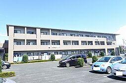昭和エクセランマンション[0204号室]の外観